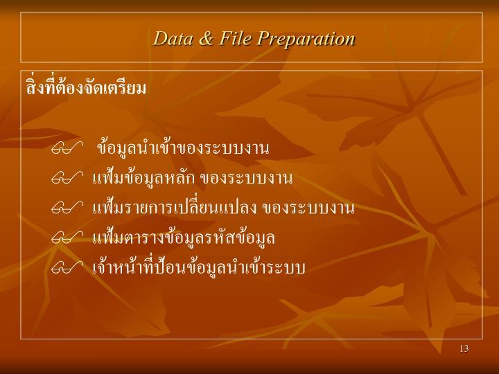 Data & File