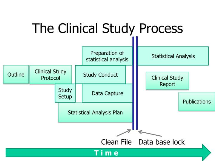 The Clinical Study Process