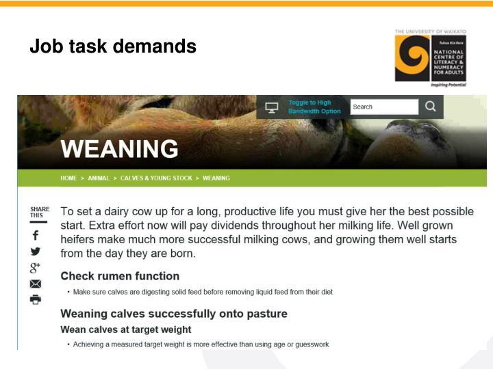 Job task demands