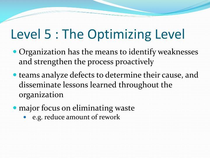 Level 5 : The Optimizing Level