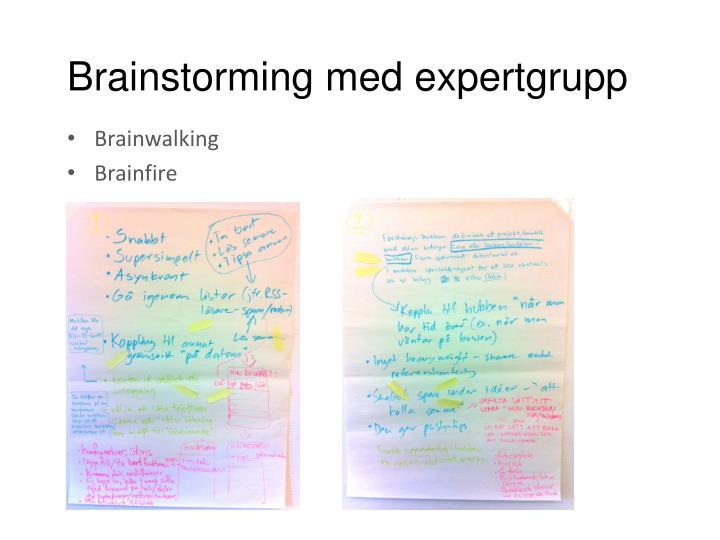 Brainstorming med expertgrupp