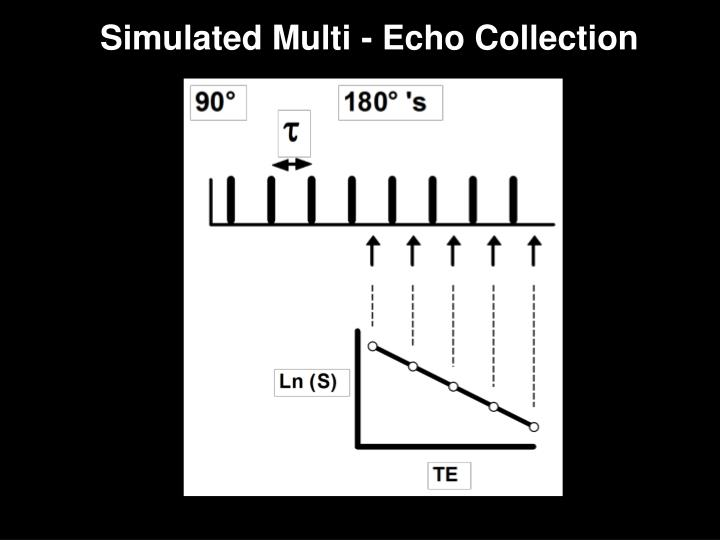 Simulated Multi - Echo Collection