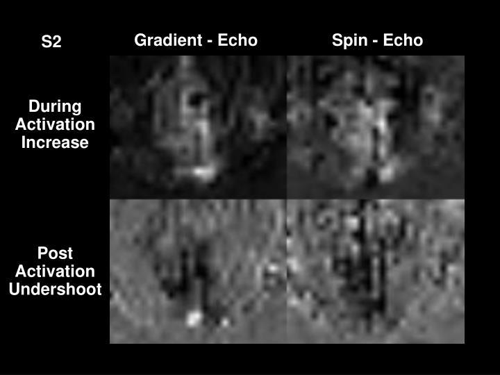 Gradient - Echo