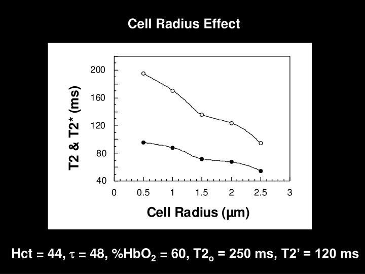 Cell Radius Effect