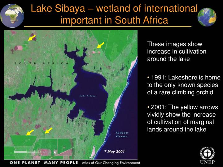 Lake Sibaya – wetland of international important in South Africa