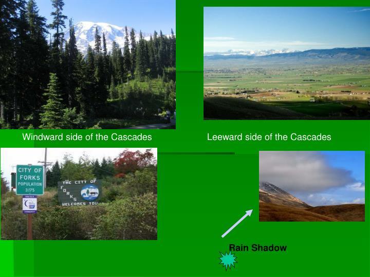 Windward side of the Cascades