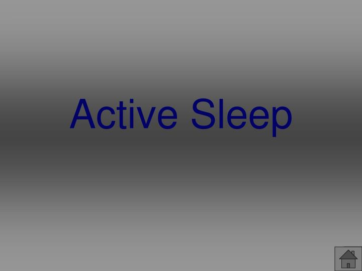 Active Sleep