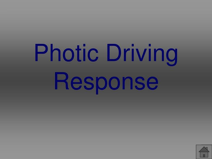 Photic Driving Response