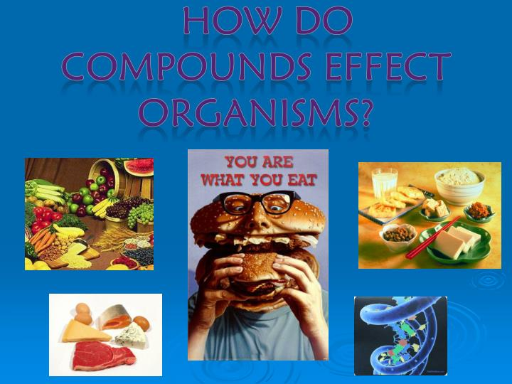 How do Compounds effect organisms?