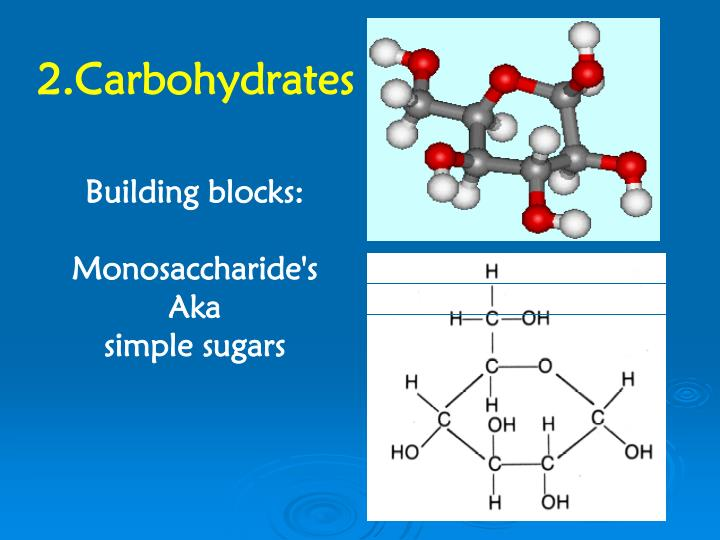 2.Carbohydrates