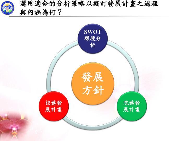 運用適合的分析策略以擬訂發展計畫之過程