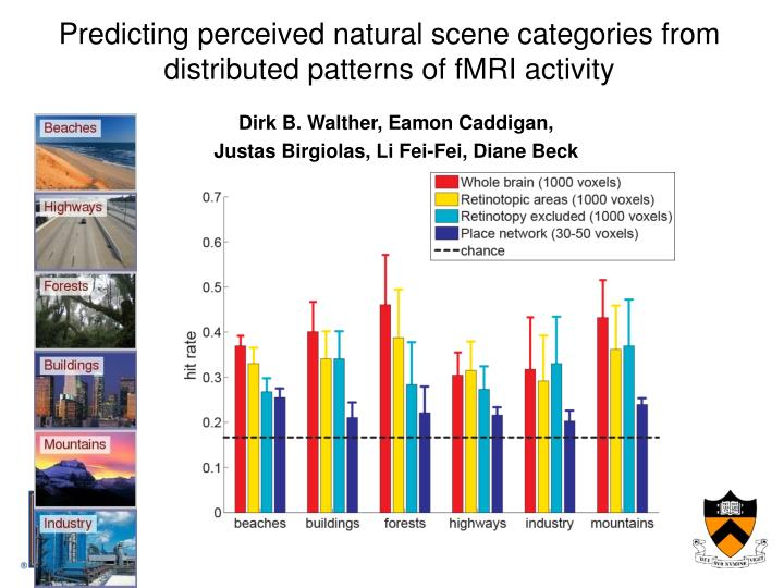 Predicting perceived natural scene categories from distributed patterns of fMRI activity
