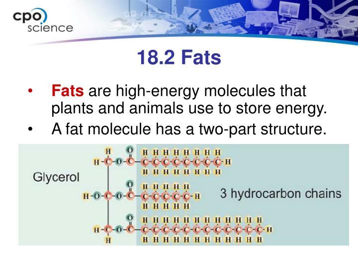 18.2 Fats