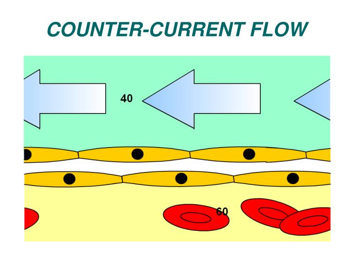 COUNTER-CURRENT FLOW