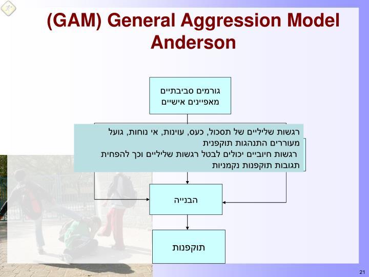 General Aggression Model