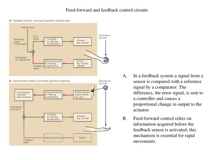 Feed-forward and feedback control circuits