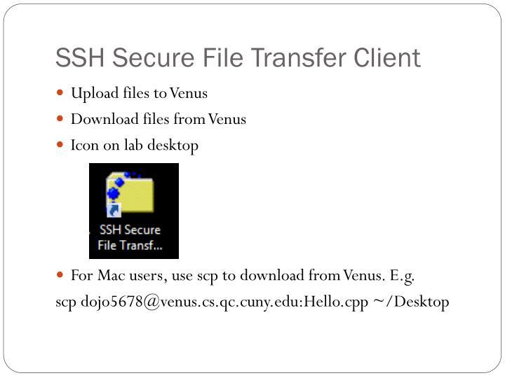 SSH Secure File Transfer Client