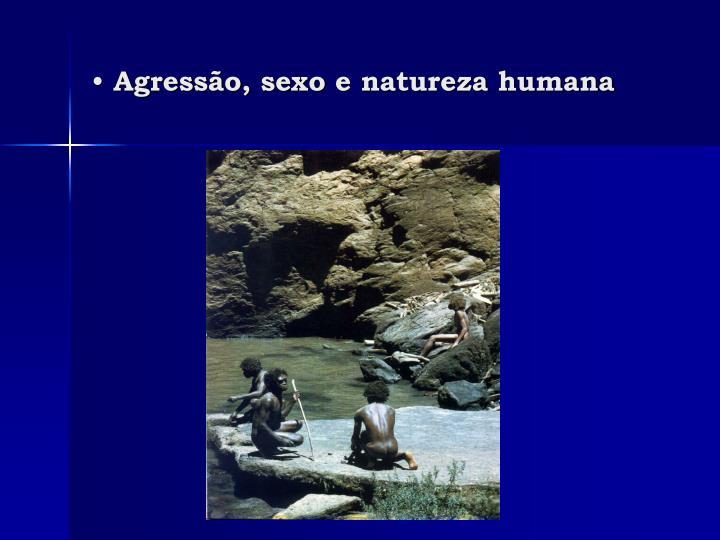 Agressão, sexo e natureza humana