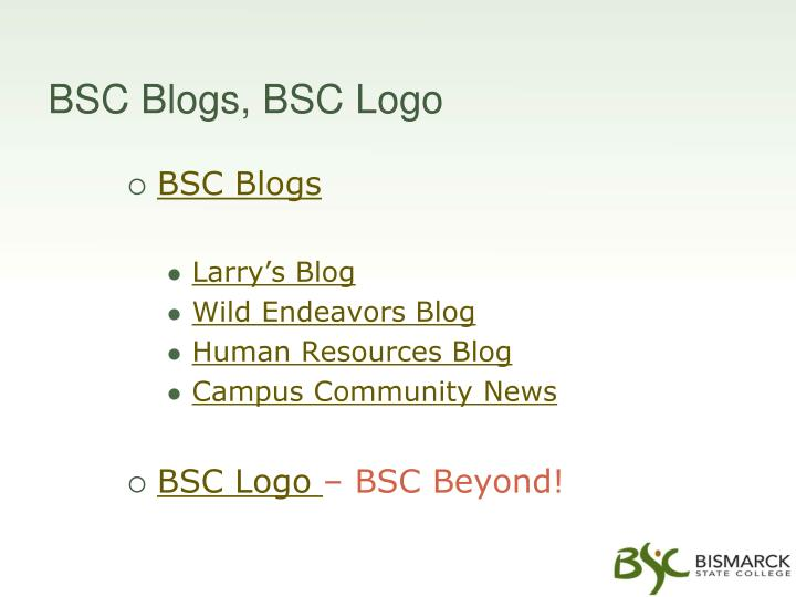 BSC Blogs, BSC Logo