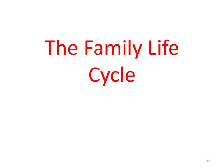 The Family Life Cycle