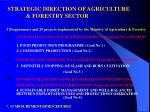 strategic direction of agriculture forestry sector