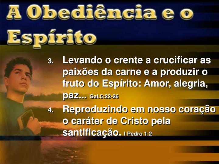 Levando o crente a crucificar as paixões da carne e a produzir o fruto do Espírito: Amor, alegria, paz...