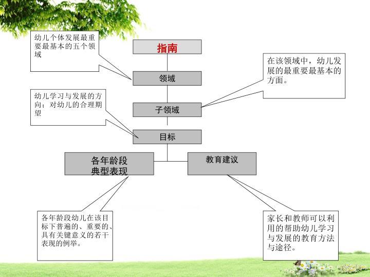 幼儿个体发展最重要最基本的五个领域