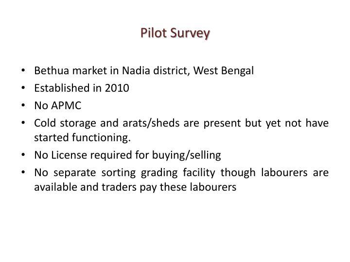 Pilot Survey