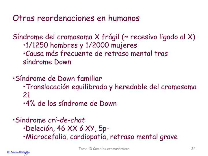 Otras reordenaciones en humanos