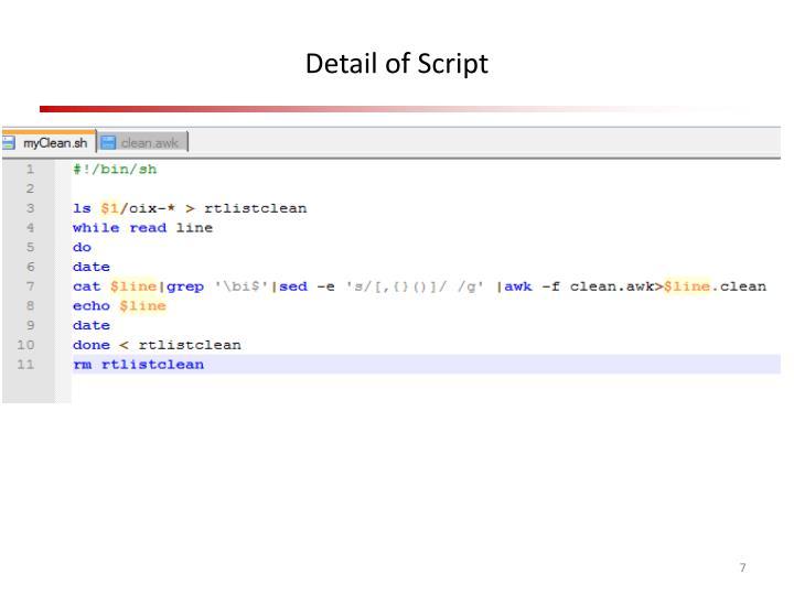 Detail of Script