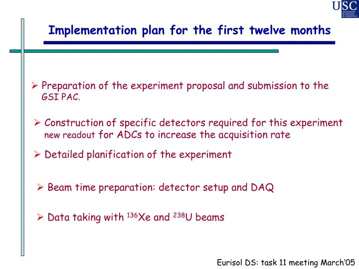 Implementation plan for the first twelve months