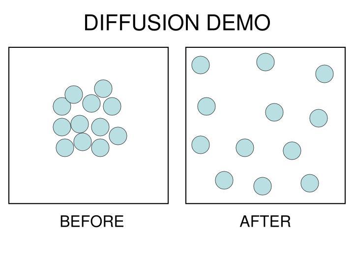 DIFFUSION DEMO