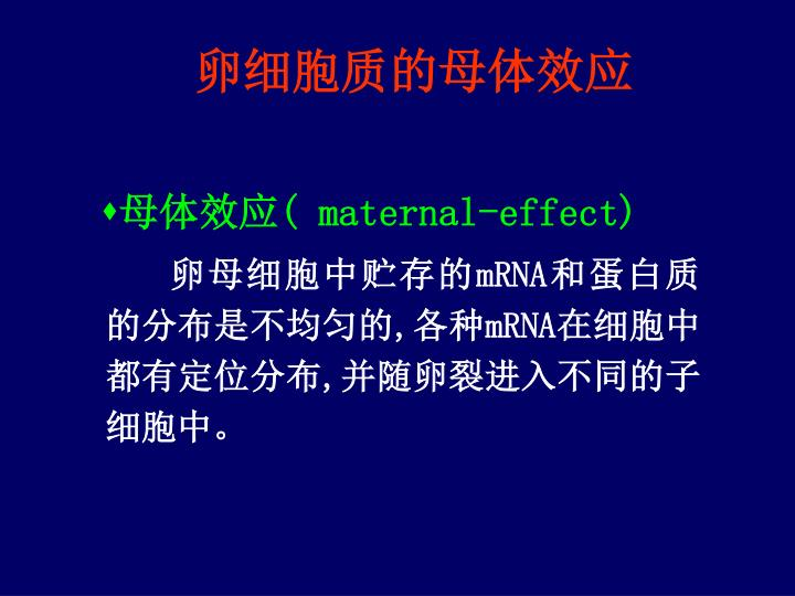 卵细胞质的母体效应