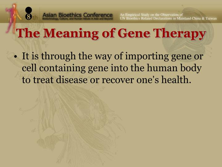 The Meaning of Gene Therapy