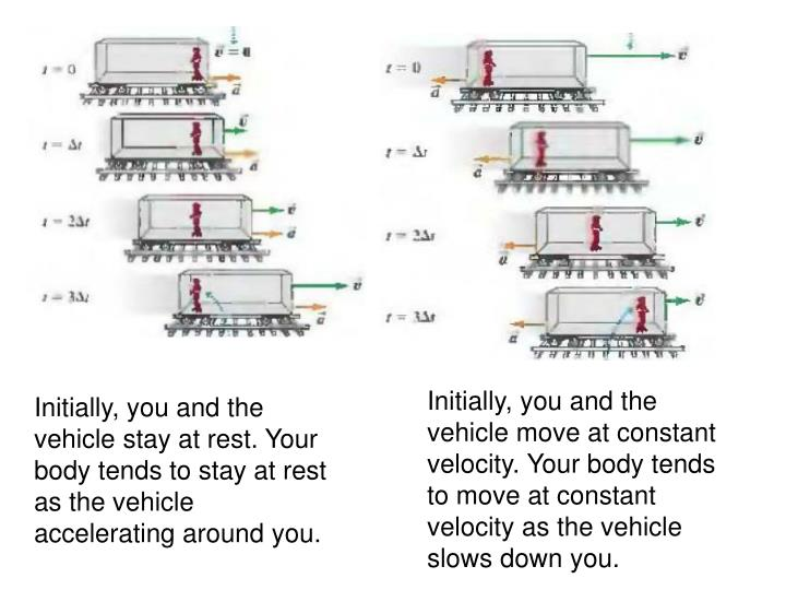 Initially, you and the vehicle move at constant velocity. Your body tends to move at constant velocity as the vehicle slows down you.