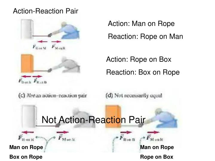 Action-Reaction Pair