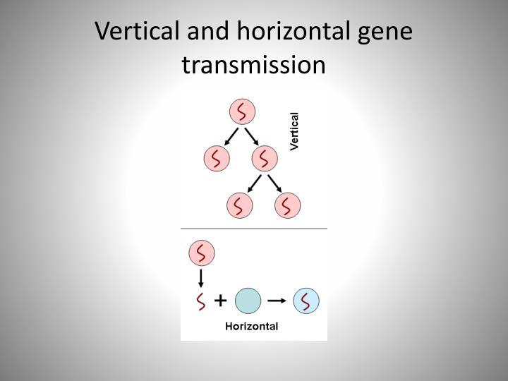 horizontal gene transmission