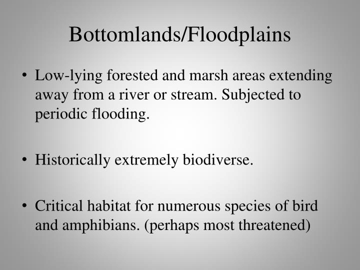Bottomlands floodplains
