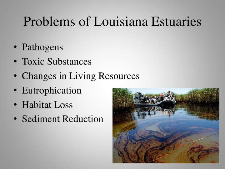 Problems of Louisiana Estuaries