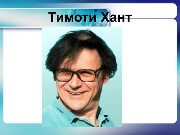 Тимоти Хант