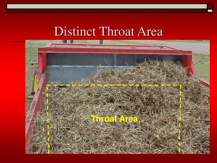 Distinct Throat Area