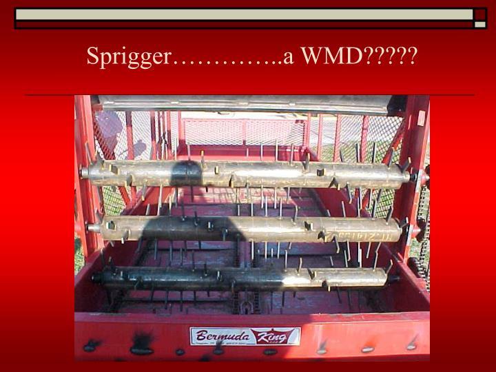 Sprigger…………..a WMD?????