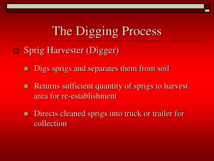 The Digging Process