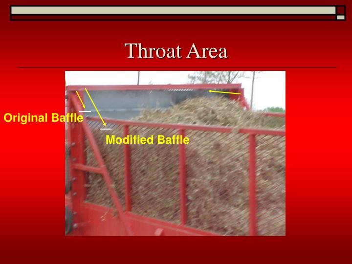 Throat Area