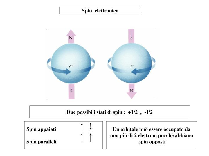 Spin  elettronico