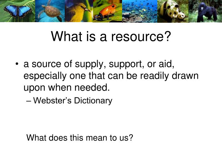 What is a resource?