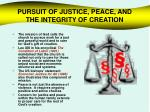 pursuit of justice peace and the integrity of creation