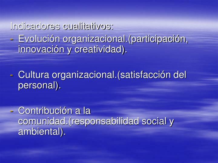 Indicadores cualitativos: