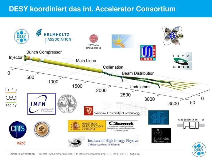 DESY koordiniert das int. Accelerator Consortium