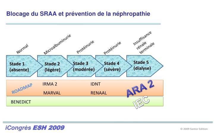 Blocage du SRAA et prévention de la néphropathie